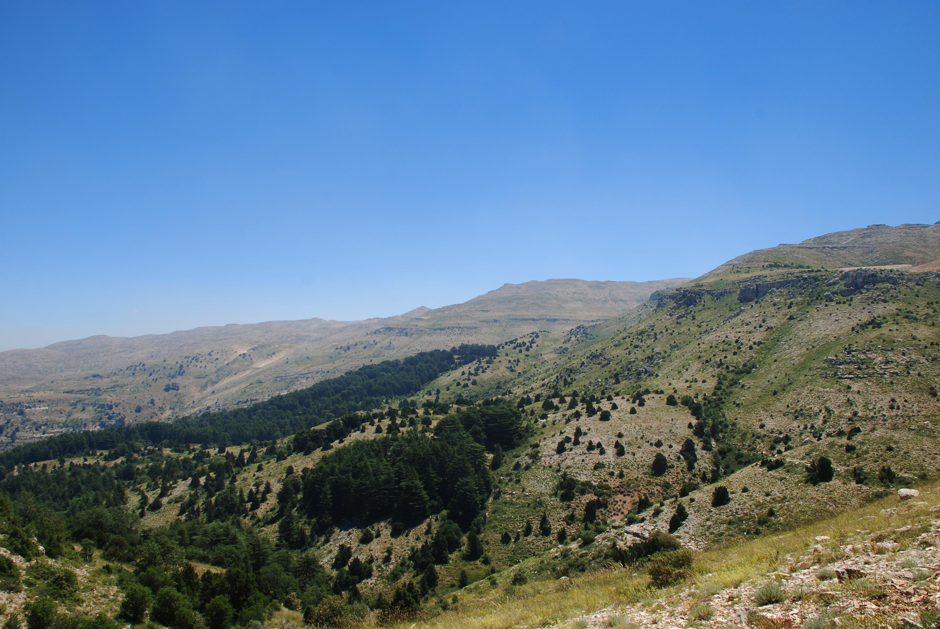 Horsh Ehden Nature Reserve @Magda Bou Dagher Kharrat